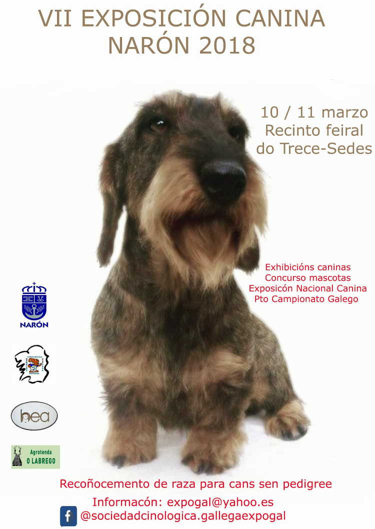 """O recinto feiral do Trece, en Sedes, acollerá esta fin de semana, mañá e o domingo, unha nova edición, a sétima, da """"Exposición Canina"""""""