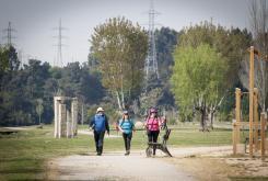 Camiño Inglés ao seu paso polo Paseo de Xubia