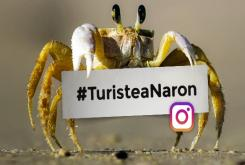 #TuristeaNaron